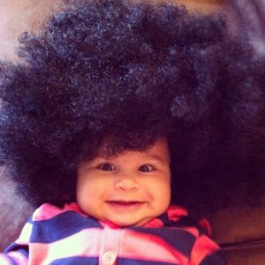dogs in witch hats babies in afro wigs happy halloween