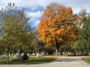 Beautiful fall day in the cemetery.